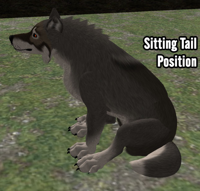 SittingTailPosition